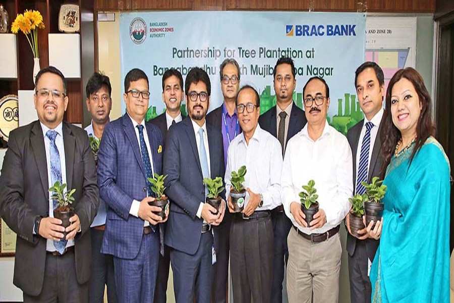 A Tree Plantation project to Improve the Environment
