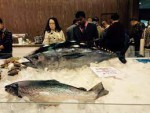 SEALAND SEAFROZEN FISH EXPORT...
